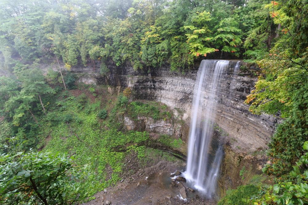 View Of Tews Falls